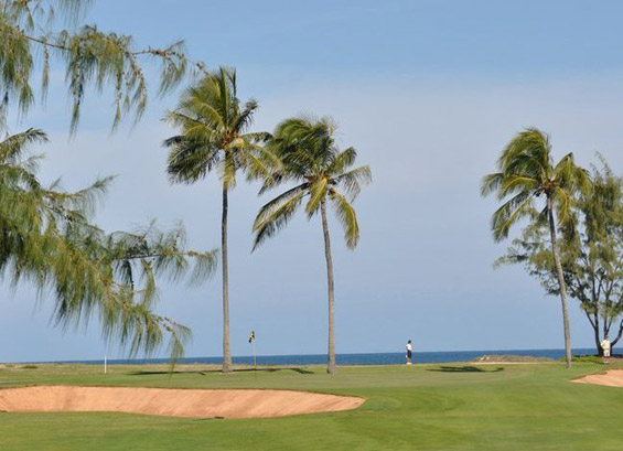 Turtle-Bay-Golf-Course