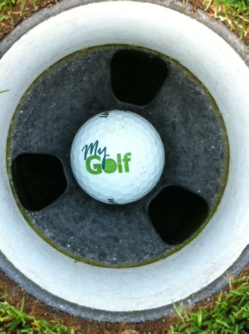 Golf-ball in a golf cup