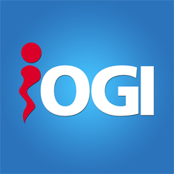 IOGI IT Outsourcing & Support